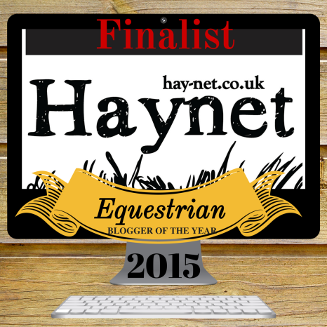 Finalist Badge Haynet Blogger of the Year 2015